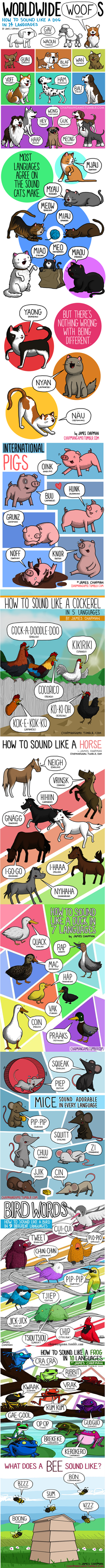 What Do Some Animals Sound Like in Other Languages?
