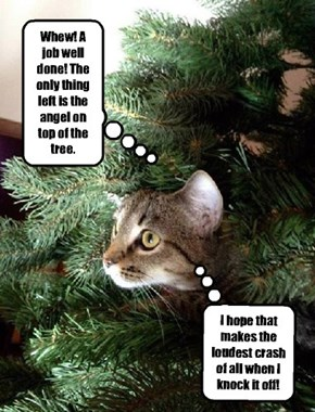 Kittehs should never be trusted to decorate the Christmas tree.