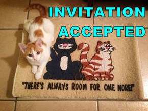 INVITATION                      ACCEPTED