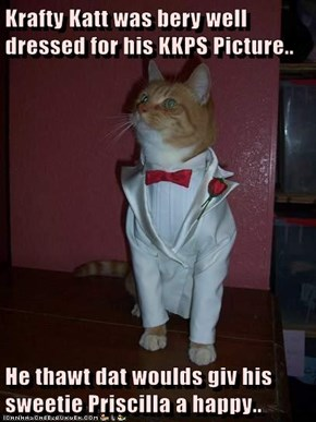 Krafty Katt was bery well dressed for his KKPS Picture..  He thawt dat woulds giv his sweetie Priscilla a happy..