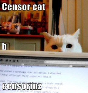 Censor cat b censorinz