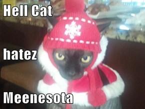 Hell Cat hatez Meenesota