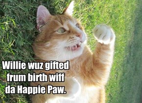 He maekt ebrybuddy happie inklooding himselfs!