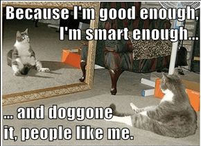Because I'm good enough, I'm smart enough...   … and doggone                      it, people like me.