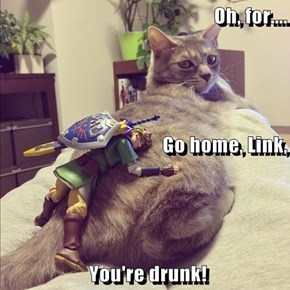 Oh, for.... Go home, Link,  You're drunk!