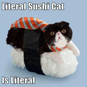 Literal Sushi Cat  Is Literal