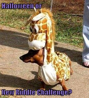 Halloween or  New Riddle Challenge?