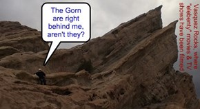 The Gorn are right behind me, aren't they?