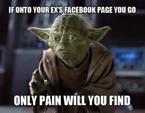 Yoda Shares His Wisdom