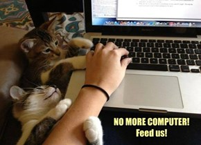 NO MORE COMPUTER! Feed us!