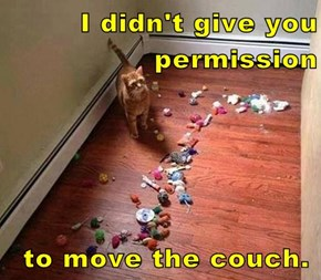 I didn't give you permission                   to move the couch.