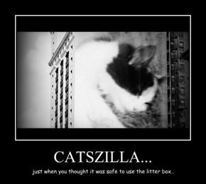 CATSZILLA...