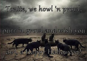 Tonite, we howl 'n prowl, purr 'n growl and wish you  awl, a Happy Halloween!