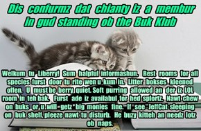 Offishul JeffCatsBookClub Memburship Kard for chianty