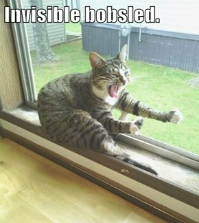 Invisible bobsled.