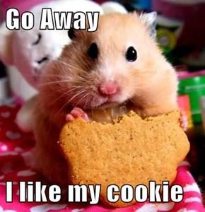 Go Away  I like my cookie