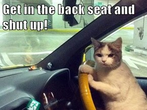 Get in the back seat and shut up!