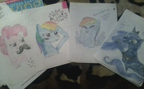 I Draw Pony Memes On My Homework