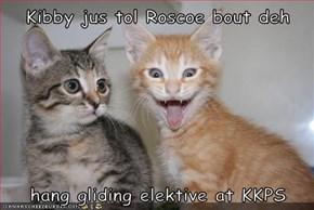 Kibby jus tol Roscoe bout deh  hang gliding elektive at KKPS