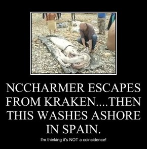 NCCHARMER ESCAPES FROM KRAKEN....THEN THIS WASHES ASHORE IN SPAIN.