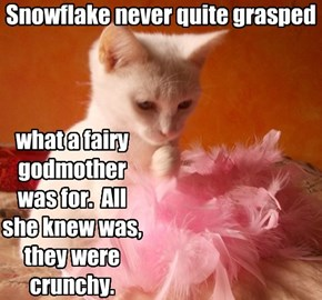 Snowflake never quite grasped