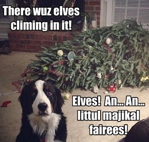 There wuz elves climing in it!