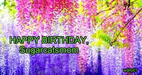 HAPPY BIRTHDAY, Sugarcatsmom