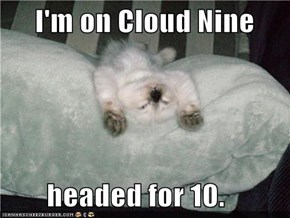 I'm on Cloud Nine         headed for 10.
