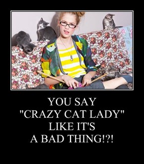 "YOU SAY  ""CRAZY CAT LADY""  LIKE IT'S  A BAD THING!?!"