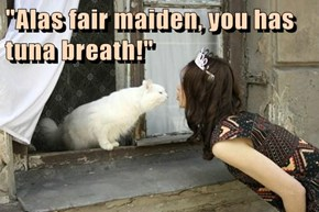 """Alas fair maiden, you has tuna breath!"""