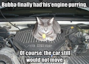 Bubba finally had his engine purring.