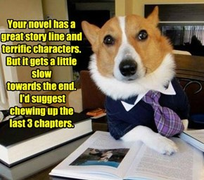 Your novel has a great story line and  terrific characters. But it gets a little slow towards the end.  I'd suggest chewing up the  last 3 chapters.