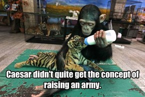 Caesar didn't quite get the concept of raising an army.