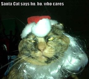 Santa Cat says ho, ho, who cares