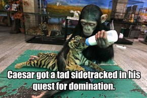 Caesar got a tad sidetracked in his quest for domination.