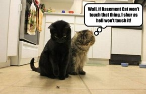 Wall, if Basement Cat won't touch that thing, I shur as hell won't touch it!