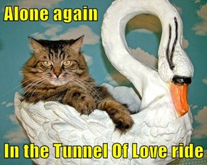 Alone again  In the Tunnel Of Love ride