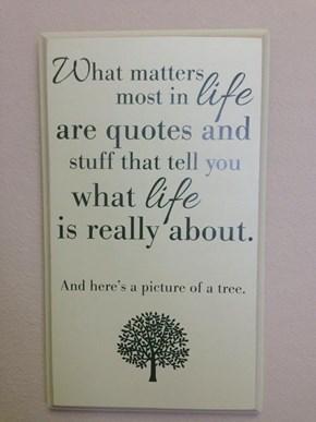 Quotes and Stuff Make Life Feel More Like Life