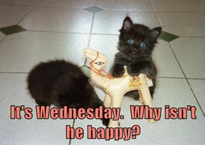 It's Wednesday.  Why isn't he happy?
