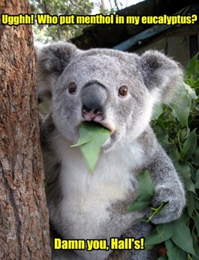 Ugghh!  Who put menthol in my eucalyptus?