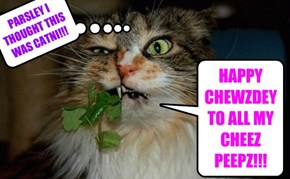 HAPPY CHEWZDEY TO ALL MY CHEEZ PEEPZ!!!