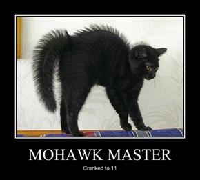 MOHAWK MASTER