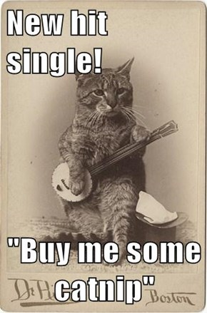 "New hit single!  ""Buy me some catnip"""