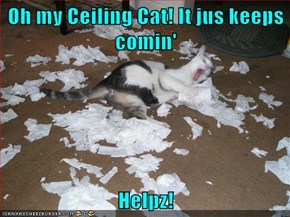 Oh my Ceiling Cat! It jus keeps comin'  Helpz!