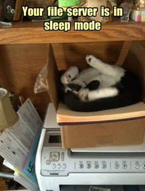 Your  file  server  is  in  sleep  mode