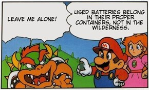 Bowser! Ur an Idiot, Geez!