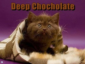 Deep Chocholate