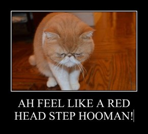 AH FEEL LIKE A RED HEAD STEP HOOMAN!