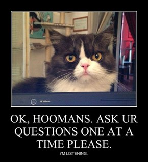 OK, HOOMANS. ASK UR QUESTIONS ONE AT A TIME PLEASE.