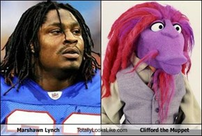 Marshawn Lynch Totally Looks Like Clifford the Muppet